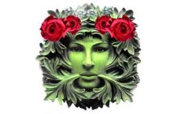 Фазы развития: вегетация и цветение
