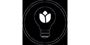 Освещение растений