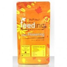 Green House Powder Feeding Short Flowering 125 gr